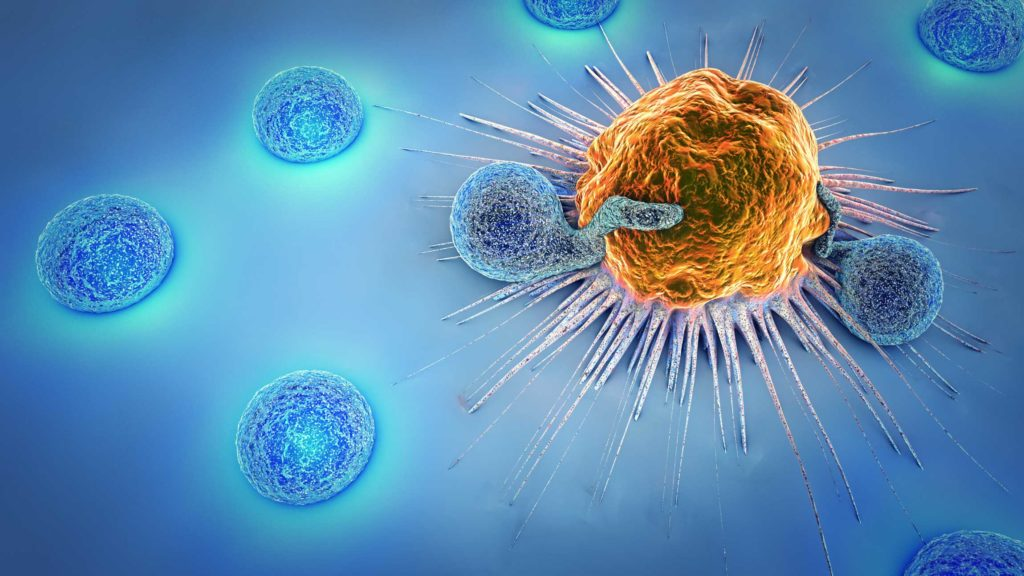 graphic of cancer cell, shown in orange, and lymphocytes, shown around the cancer cell in blue