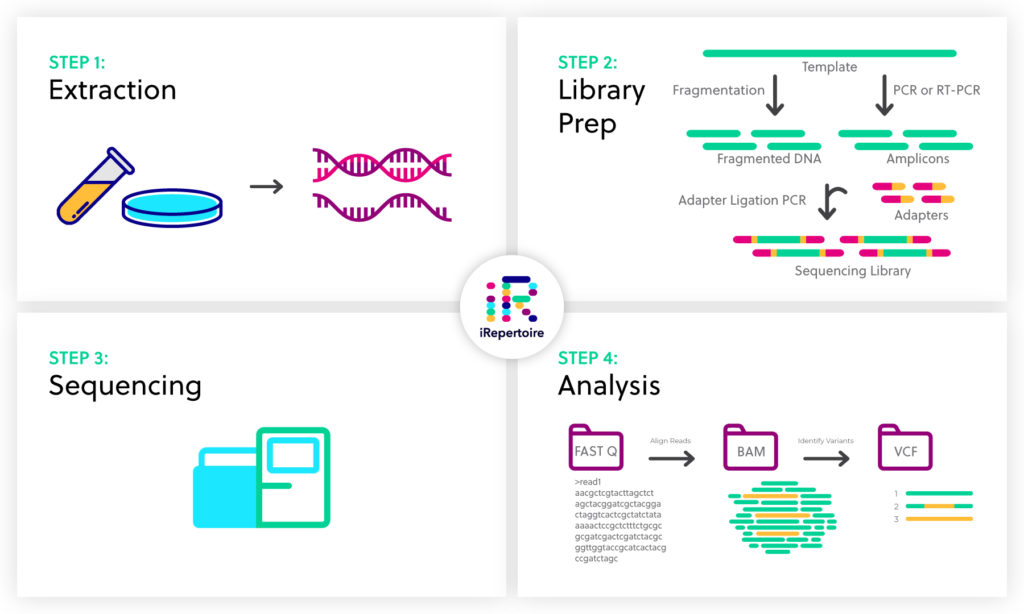 Next-generation sequencing workflow: 1) Extraction 2) Library Prep 3) Sequencing 4) Analysis